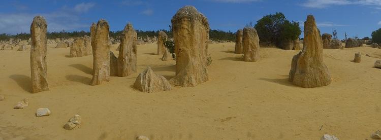 Pinnacles Geschichte 1: Wald - verbrannt und nur noch ein paar Stümpfe - mit Sand zu geschüttet - Reaktion Sand und Baumstümpfe dadurch härter - das Zugeschüttete vom Winde verweht und nur die härteren SAnd Baum Säulen blieben stehen
