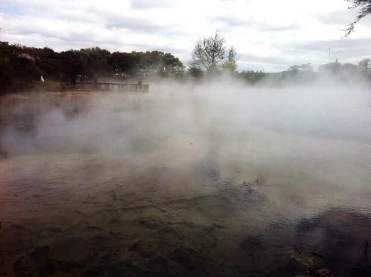 Willkommen in Rotorua. Über all qualmt und stinkt es!