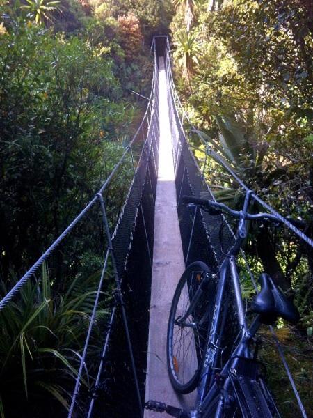 Ich dachte es ist eine gute Idee mein Rad 4km durch den Busch zu schleppen. Meine Muskeln sehen das nun anders.